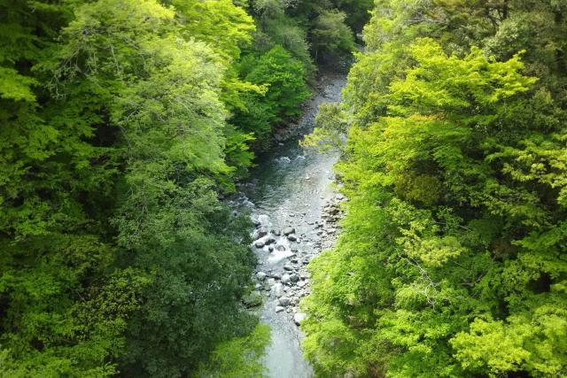 道志村の天然水(doshiwater)