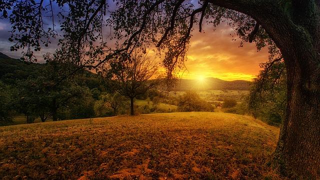 太陽の絵柄